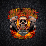 Hells Canyon HD logo
